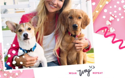 Podcast Episode 110: Connecting with Pet Parents on Instagram with Angela Pantalone of Wag Central