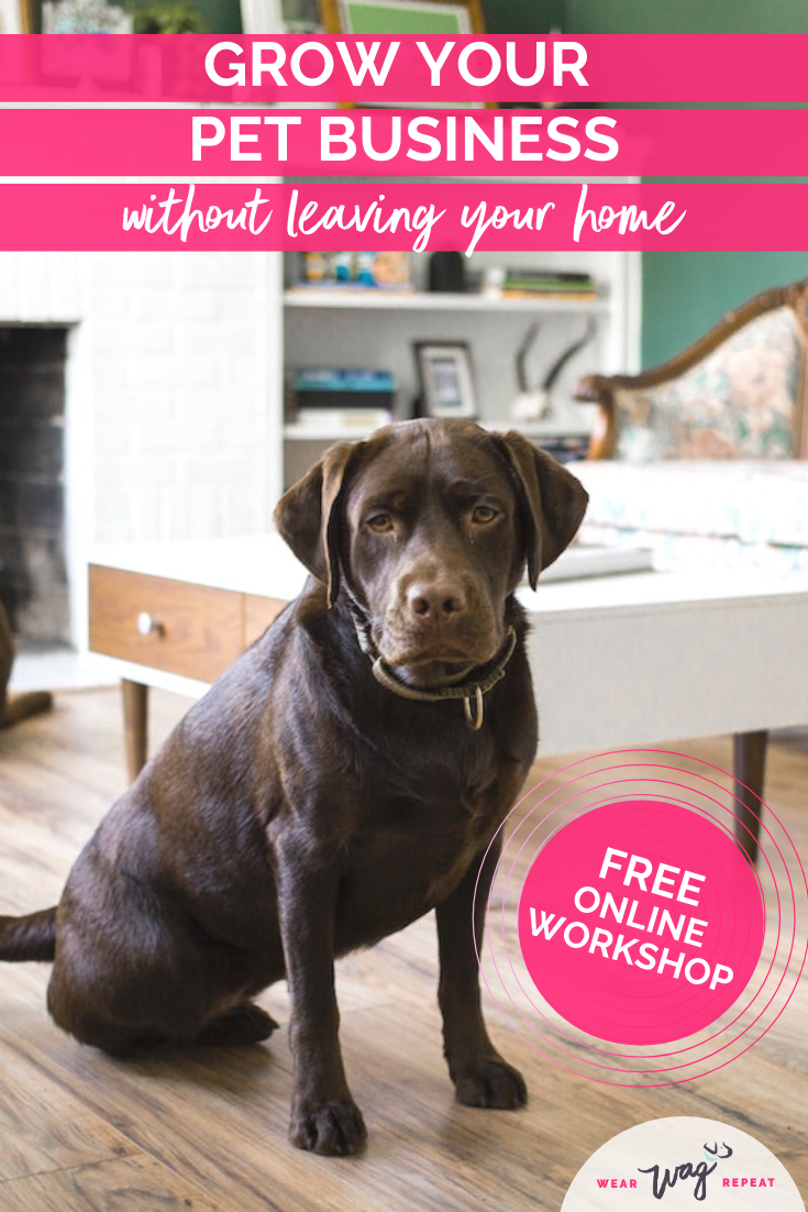 grow your pet business at home
