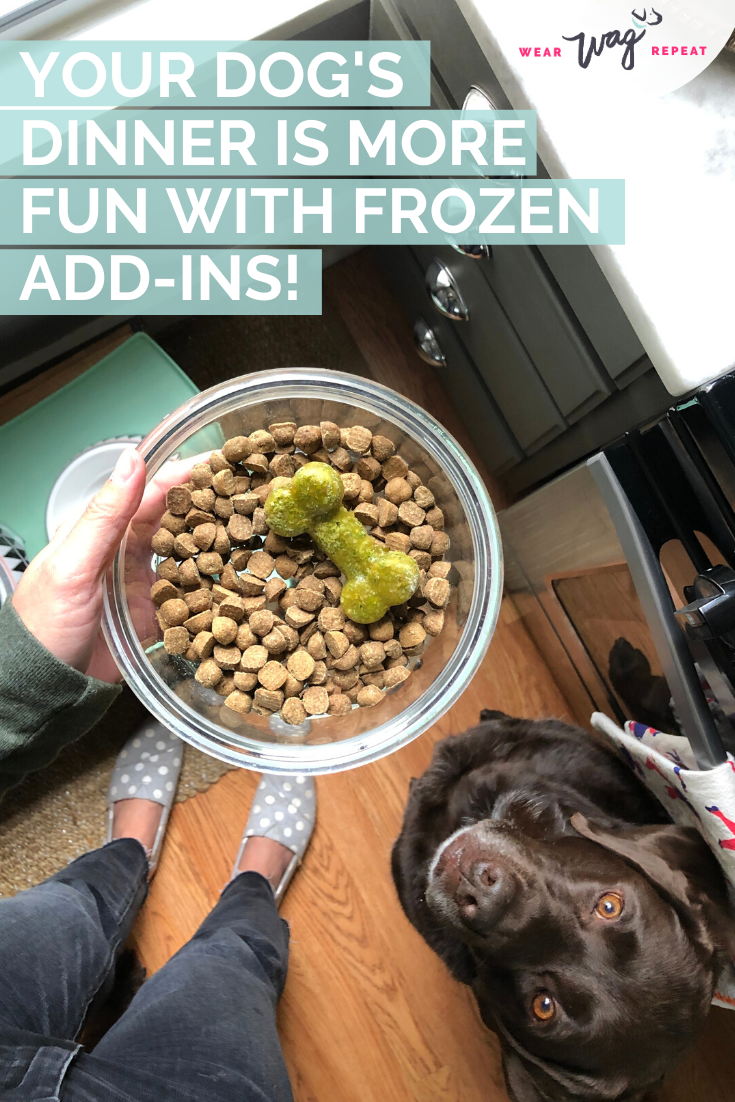 How To Make These Easy Kale and Apple Frozen Dog Treats that boost your dog's digestion
