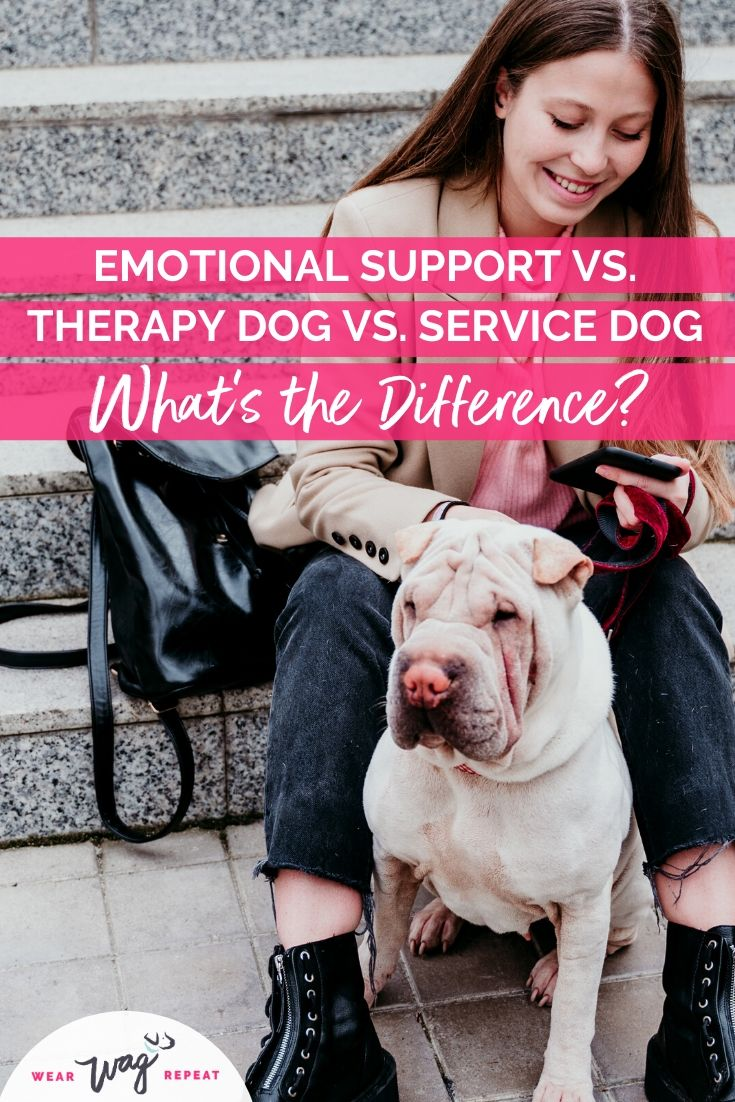 Whats the difference emotional support dog therapy dog