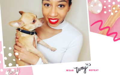 Podcast Episode 120: Planning Pet Friendly Events with Desh Valcin of Chase + Papi