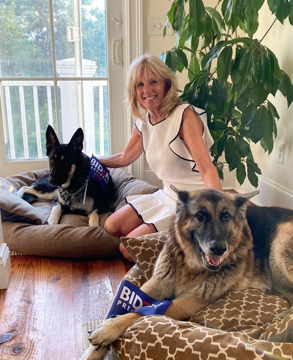 Dr Biden with dogs Champ and Major