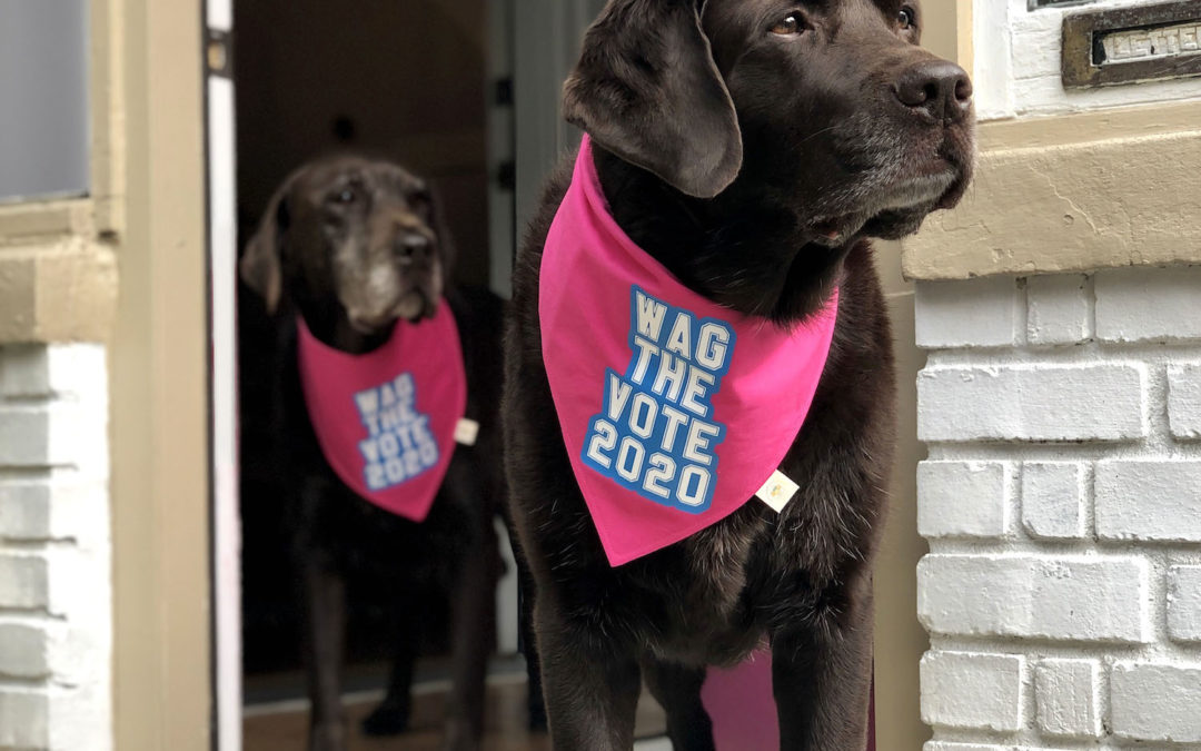 Best 2020 Election Gear for Dog Lovers