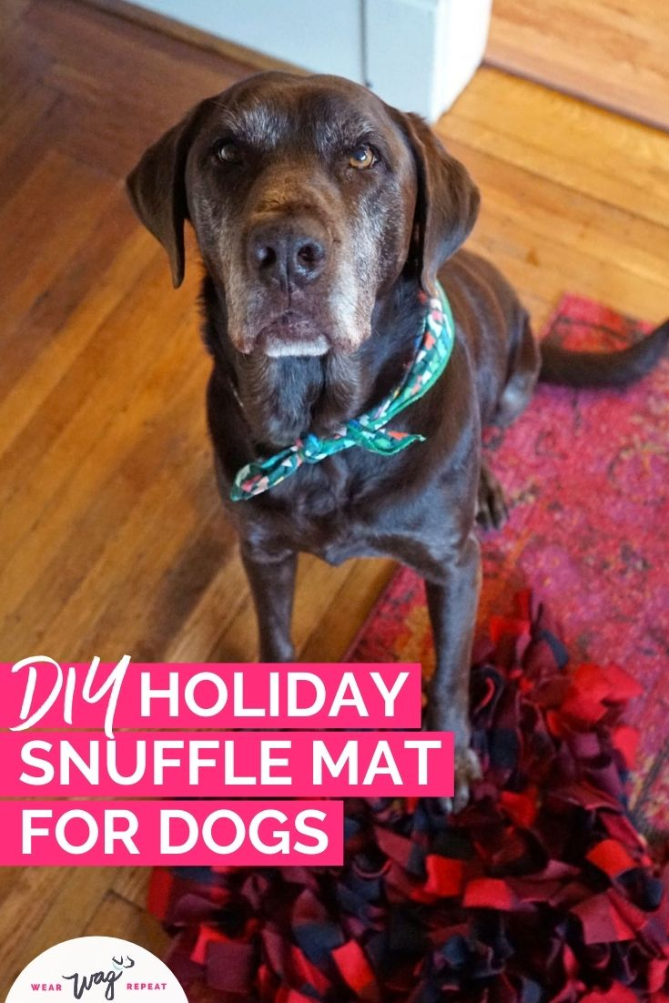 DIY holiday snuffle mat toy