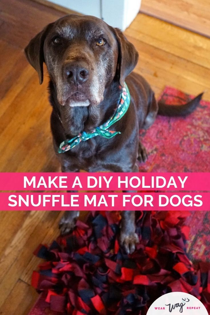make a DIY snuffle mat for dogs