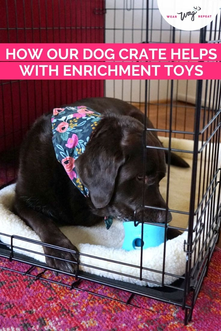 dog crate enrichement toy