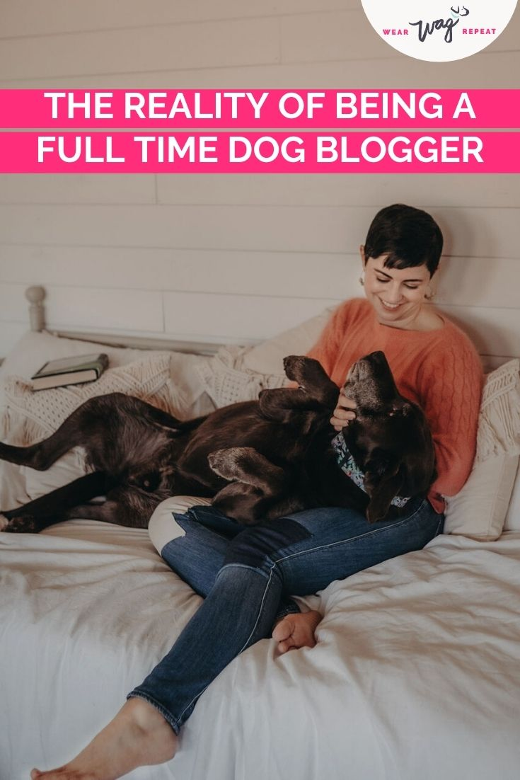 the reality of being a dog blogger