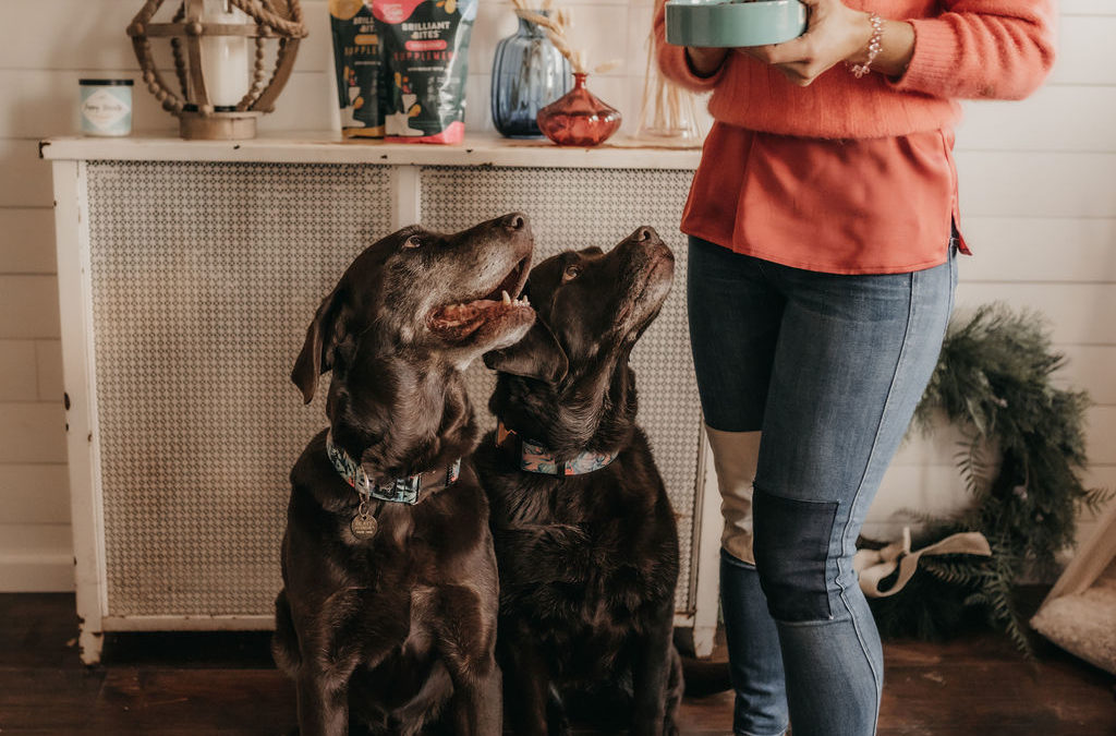 Dog Mom Review: Happy Go Healthy Brilliant Bites Supplements