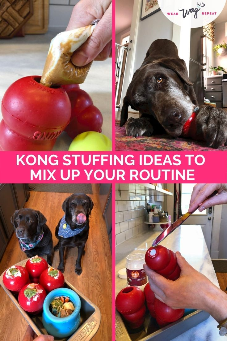 kong stuffing ideas for dogs