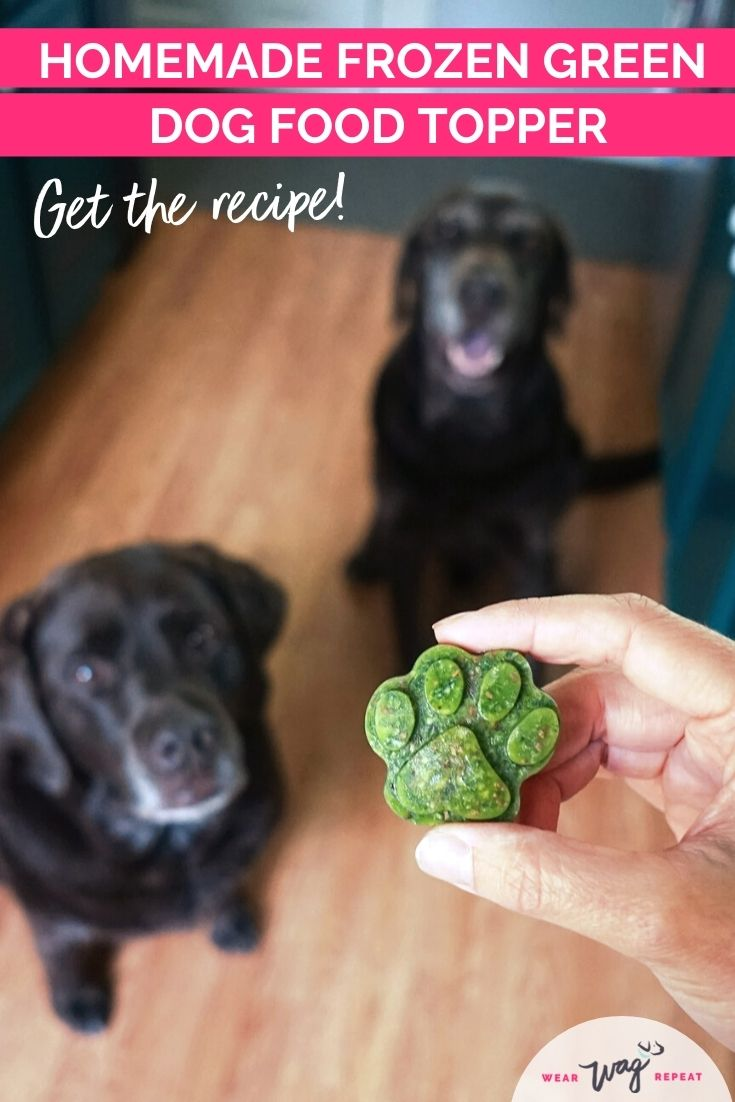 Green Superfood Dog Food Topper Recipe
