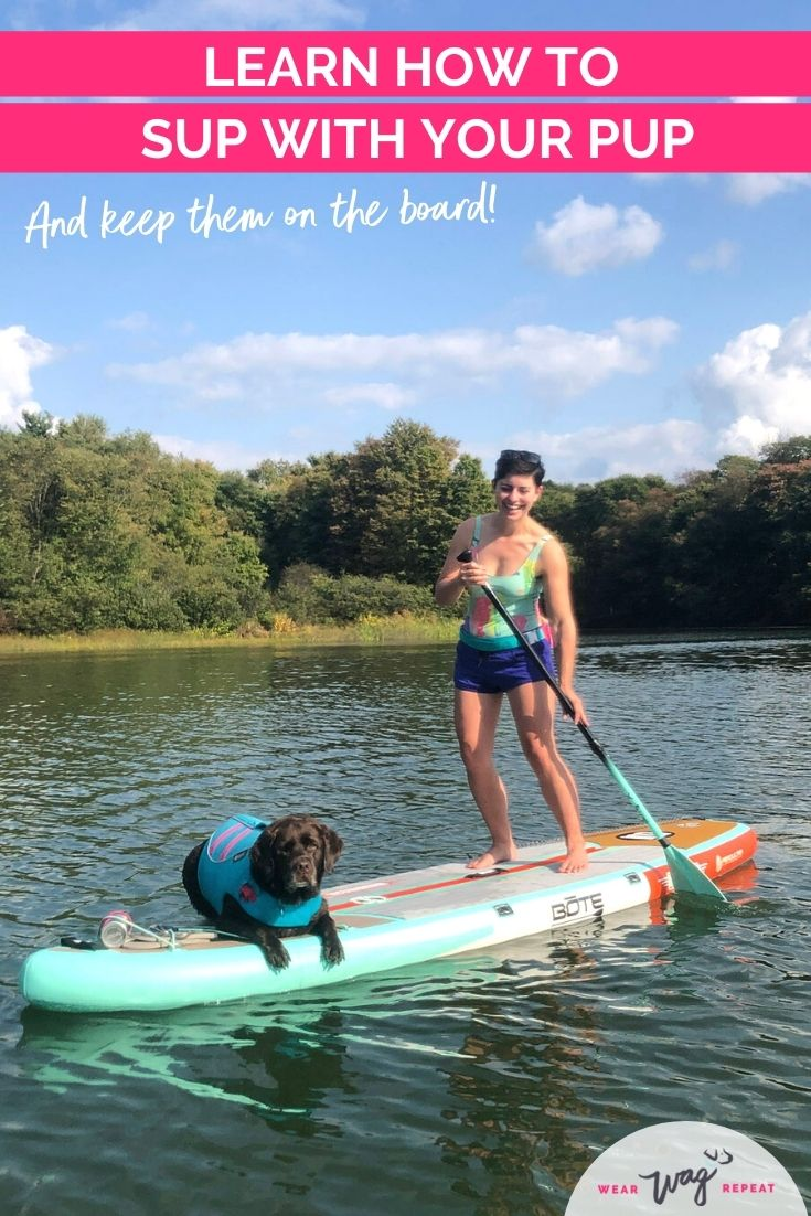 Learn how to SUP with your pup