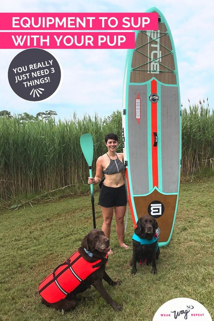 equipment to sup with pup