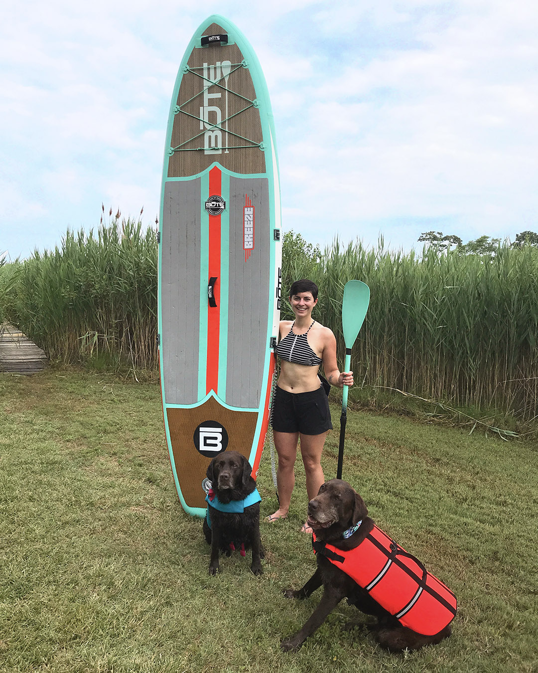 teach your dog to stay on paddleboard