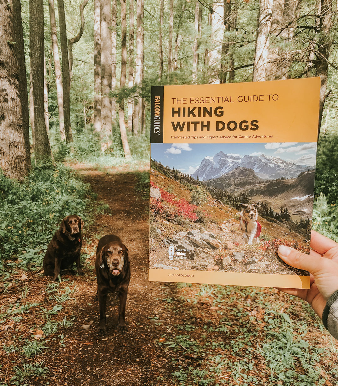 Essential Guide to Hiking with Dogs Book