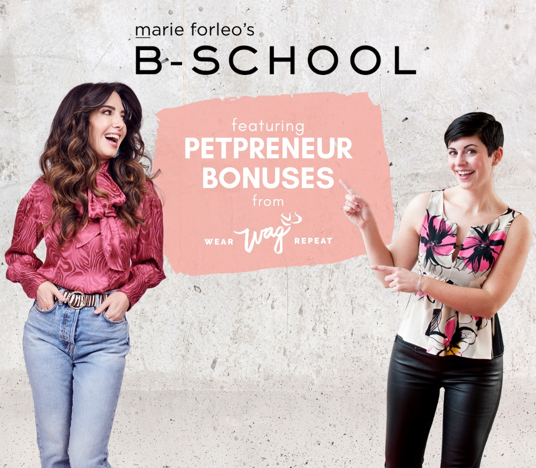 Is B School the right fit for pet businesses