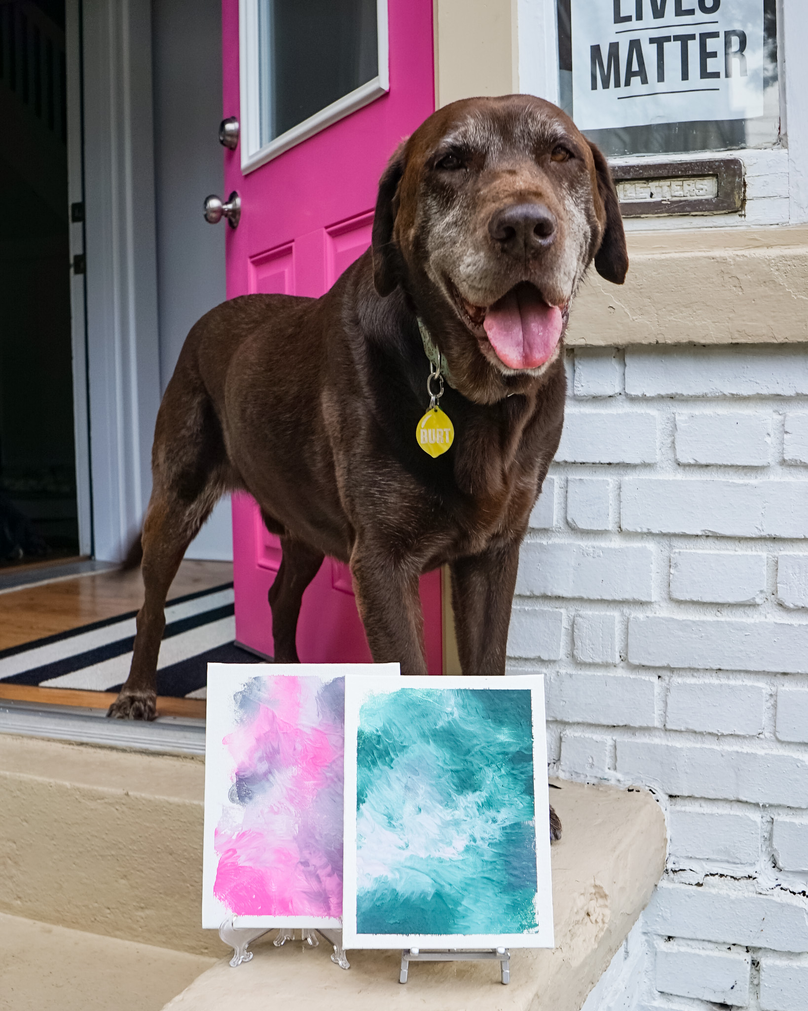 How to paint with your dog