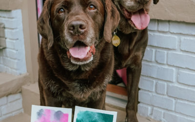 Paint with Your Dog: Quick and Easy Lick Painting Tutorial