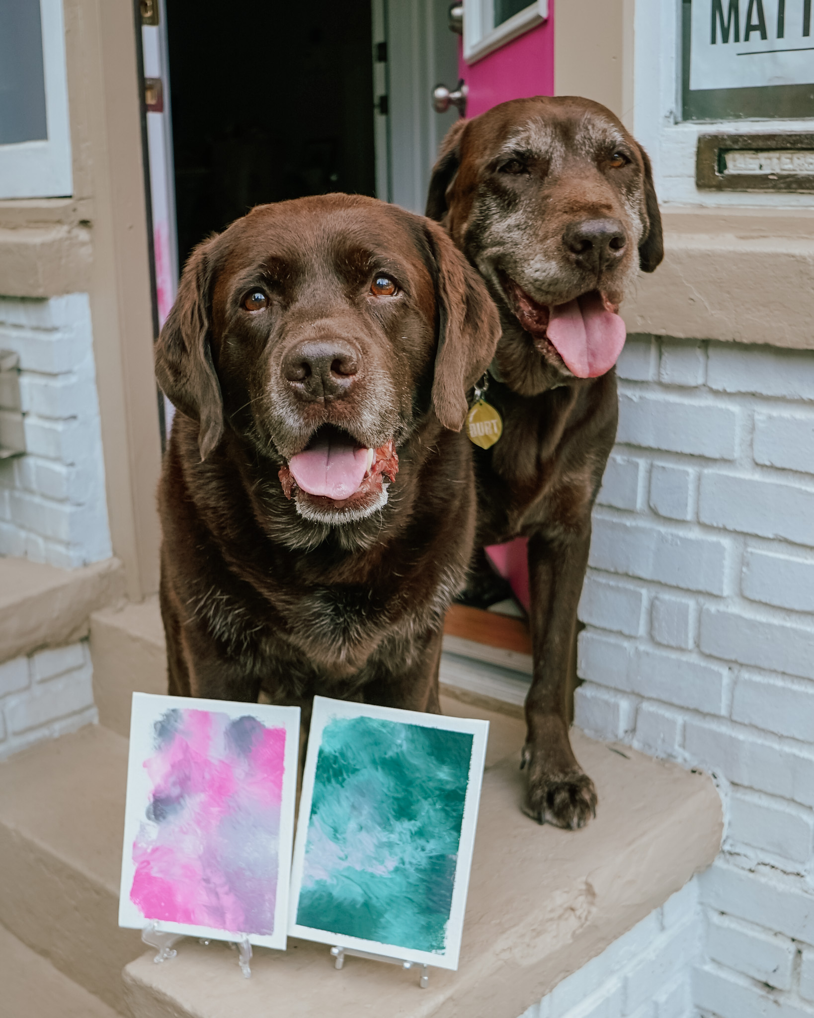 Paint with Your Dog DIY Lick Painting Tutorial