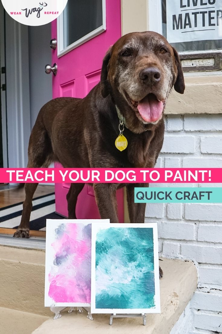 teach your dog to paint
