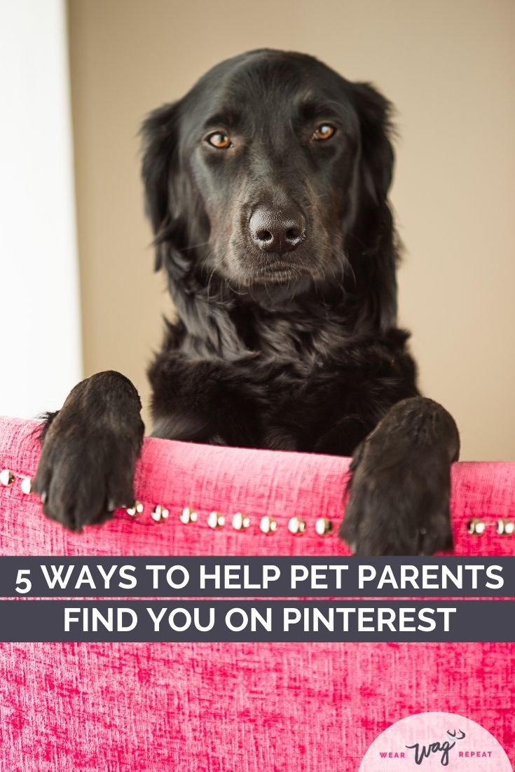 5 ways to help pet parents find you on pinterest