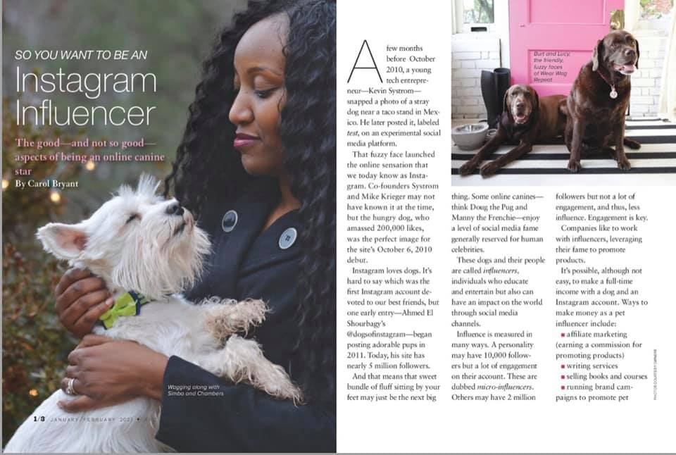 Wear Wag Repeat in AKC Family Dog Magazine